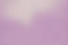 2-Flieder-Transparent